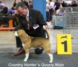 Country Hunters Quorry Main